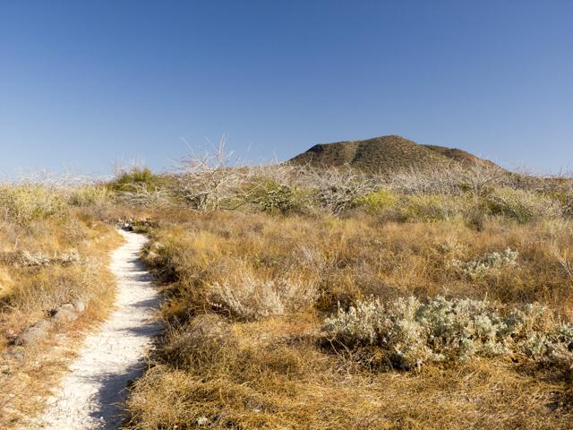 coronados south trail P1140866